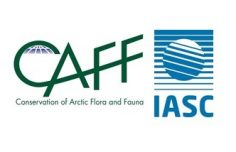 CAFF-IASC Science Policy Fellowship Call for Applications