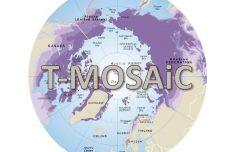 INTERACT at T-MOSAIC Workshop