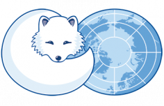 Open Positions at Arctic Council