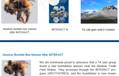 INTERACT Newsletter #6 available for download