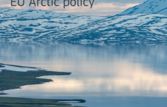 Summary of the results of the public consultation on the EU Arctic policy