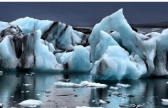 The Frederik Paulsen Arctic Academic Action Award